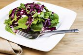 Fresh Salad And Herbs On Plate With Fork And Napkin