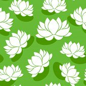 Seamless pattern with lotus flowers. Vector illustration.