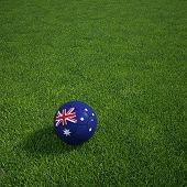 3D Darstellung einer australischen Soccerball lying on grass