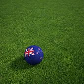 3D Rendering of a New Zealand Soccerball lying on grass