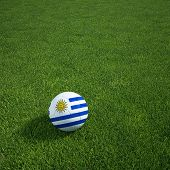3D-Rendering ein uruguayischer Soccerball lying on grass