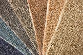 Photo of Carpet Guide Fan