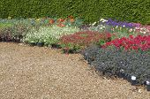 English Flower Beds In Garden