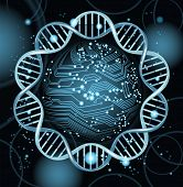 stock photo of genetic engineering  - abstract vector background with high tech circuit board - JPG