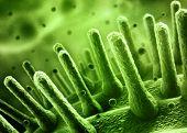 Bacteria spheres 3d illustration