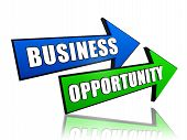 Business Opportunity In Arrows