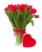 spring red tulips in vase