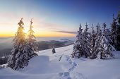 Winter landscape with sunset frosty evening in a mountain valley. Carpathians, Ukraine, Europe