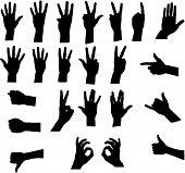 Assorted Hand Signals Vector