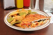 stock photo of chipotle  - Grilled chipotle chicken panini with vegetable tortilla chips - JPG