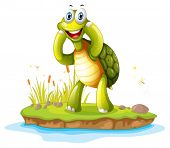 Illustration of a smiling turtle in an island on a white background