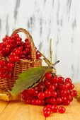 Red berries of viburnum in basket on table on wooden background
