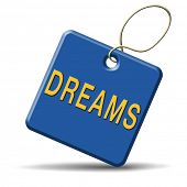 dreams realize and make your dream come true be successful and accomplish your goals button or icon with text and word concept