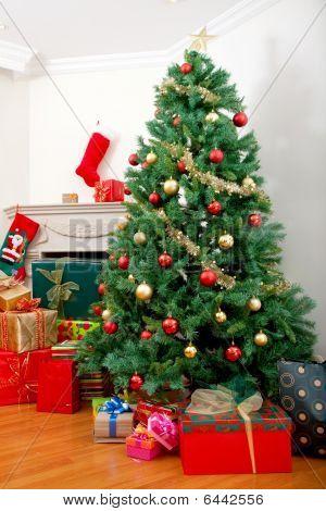 Постер, плакат: Дом с рождественские украшения, холст на подрамнике