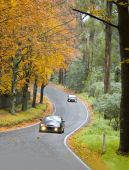 Cars Driving A Windy Road In Autumn