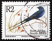 Postage Stamp South Africa 1993 Blue Swallow, Bird