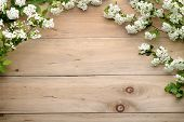 white flowers and buds on wood background