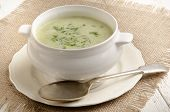 Broccoli Cream Soup With Parsley