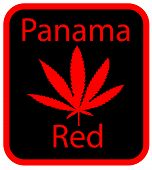 Panama Red marijuana leaf