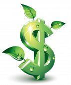 Flourishing dollar