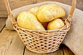 Potatoes yellow in basket with burlap on board