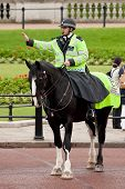 Policeman On The Horse
