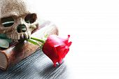 Poetry Of Death