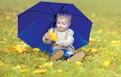 Cute Little Child With Umbrella In Autumn Park
