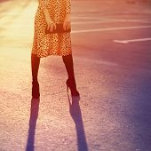 image of clutch  - Stylish fashion concept elegant pretty woman in leopard dress with clutch posing outdoors on sunset light vintage colors photo - JPG
