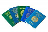 Different Foreign Passports On The White Background