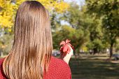 Beautiful autumn leaf in hand, outdoors