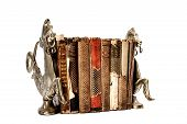 stock photo of neglect  - Old and rather neglected books positioned between two copper book stops shaped like horses - JPG