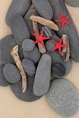 Starfish sea shells, driftwood and pebbles on a sand beach.