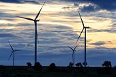 stock photo of turbines  - Field of wind turbine during sunset - JPG