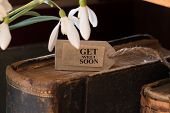 image of get well soon  - snowdrop and card with lettering get well soon - JPG