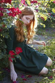 picture of auburn  - Beautiful young caucasian woman with auburn hair freckles and green eyes sitting in the rose garden - JPG