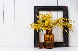 picture of mimosa  - Home decor - JPG
