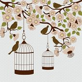 picture of caged  - Card with bird cage hanging from floral branch and birds - JPG