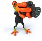 picture of megapixel  - Fun frog - JPG