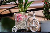 pic of tricycle  - Flower support representing a white tricycle with flowers arround - JPG