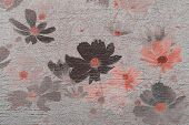 stock photo of cosmos flowers  - Cosmos flower on cement textured background made vintage - JPG