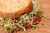 picture of fresh slice bread  - Slice of fresh baked wholemeal bread with alfalfa and radish sprouts on wooden surface concept of healthy lifestyle diet food and nutrition - JPG