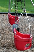 Baby Swings