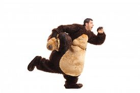 picture of horrifying  - Studio shot of a horrified man in a bear costume running away from something isolated on white background - JPG