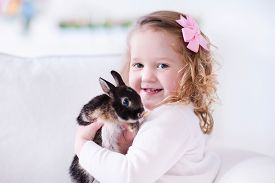 pic of bunny rabbit  - Child playing with a real rabbit - JPG