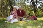 picture of nic  - Elderly couple enjoying a leisure pic nic outdoors in the field - JPG