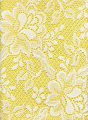 Close Up de encaje blanco de tela Floral en amarillo