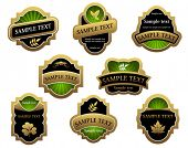 Set of vintage golden labels for design food and beverages