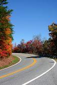 Georgia Mountain Road