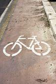 Dirty Bicycle Lane